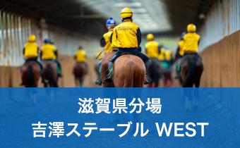 滋賀県分場 吉澤ステーブル WEST