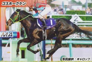 ゴスホークケン(育成馬)